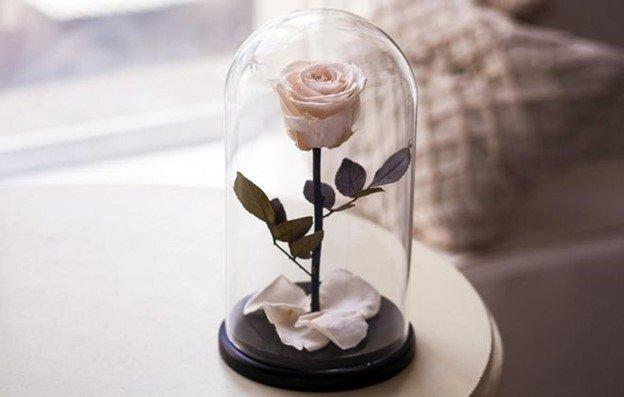 Роза в колбе – как отличить оригинал от подделки, инструкция по созданию  изделия своими руками