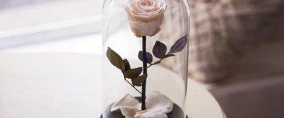 Декорируем интерьер: розы в колбе