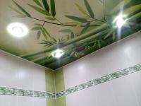 Натяжной потолок с фотопечатью арт.SD-488 серии MSD Premium.