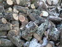Дрова дубовые,сосновые
