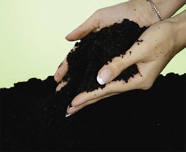 Чернозем-плодородная земля с доставкой