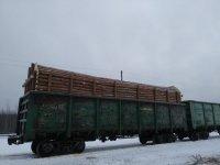 Балансы хвойные тонкомер сосна на вагоне