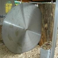 Дисковые пилы TTH без напаек с диаметром от 160 до 1500 мм