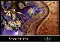 Structura декоративная штукатурка 25кг
