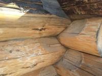 Срубы домов, бань из рубленого бревна