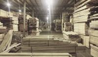 Пиломатериалы из ценных и хвойных пород древесины от компании «Орис Трейд»