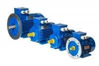 Электродвигатель АИР112М2; 4; 6; 8