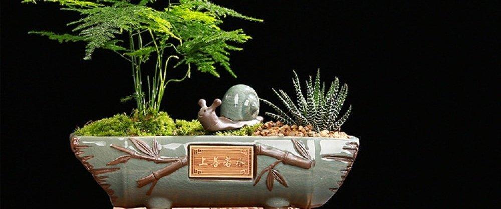 5 товаров для домашнего сада с AliExpress