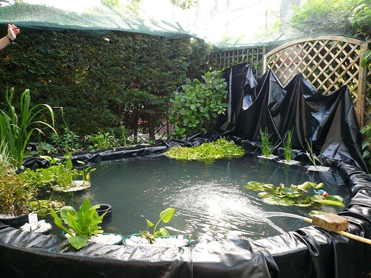 Декоративный пруд на даче фото 8