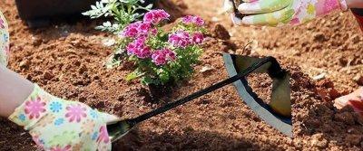 5 садовых помощников с AliExpress
