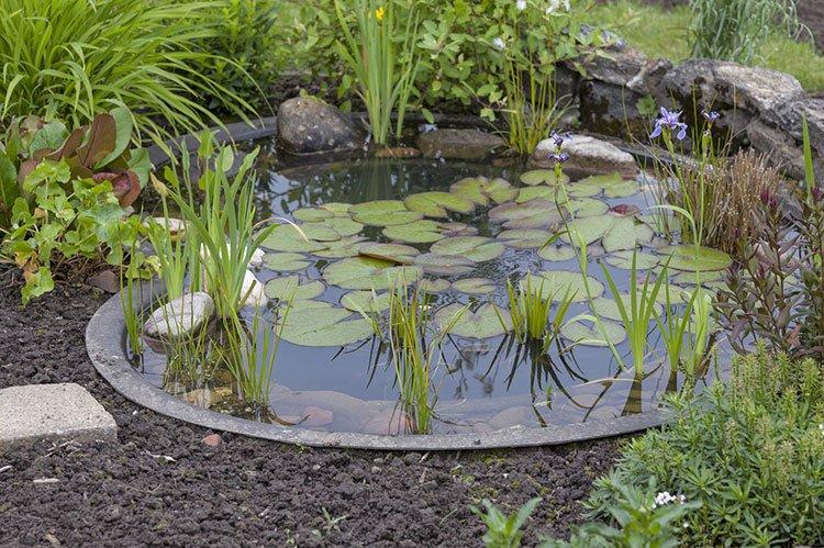 Декоративный пруд на даче фото 7