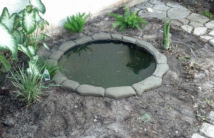 Декоративный пруд на даче фото 9