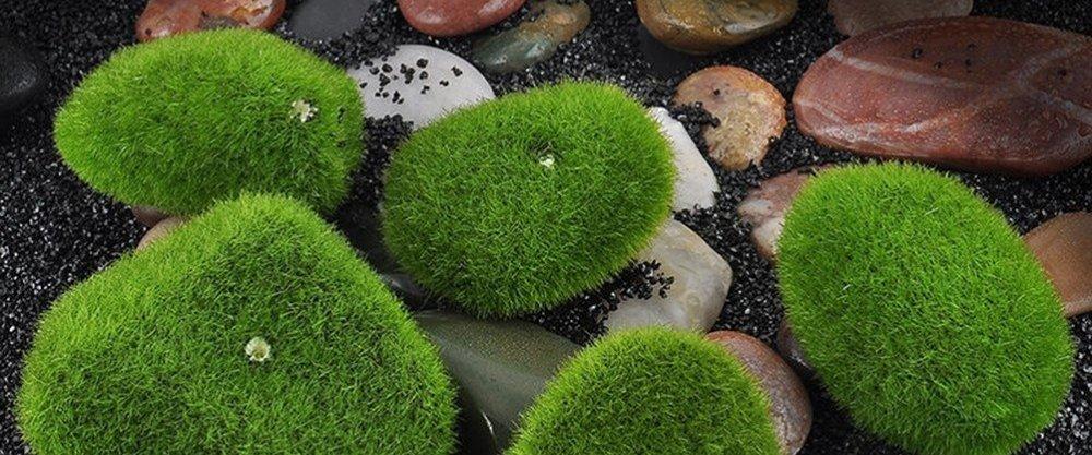 5 чудесных находок для украшения сада с AliExpress