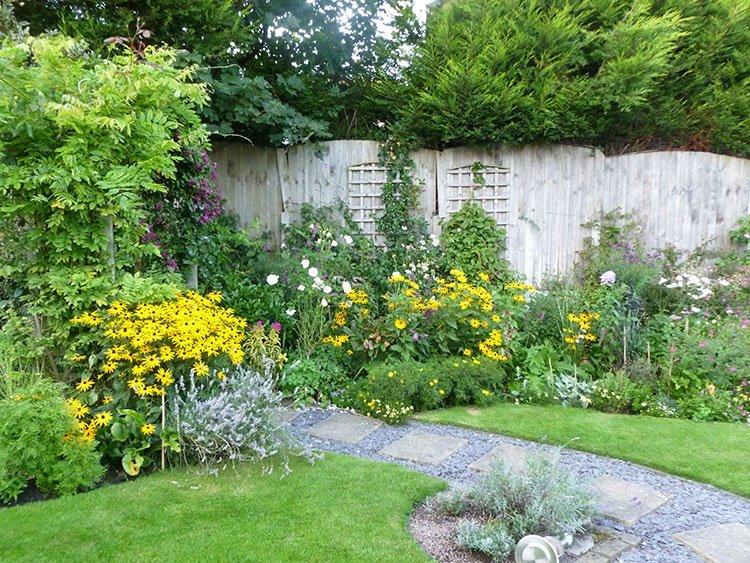 Идея для живой изгороди: дикий сад фото 2