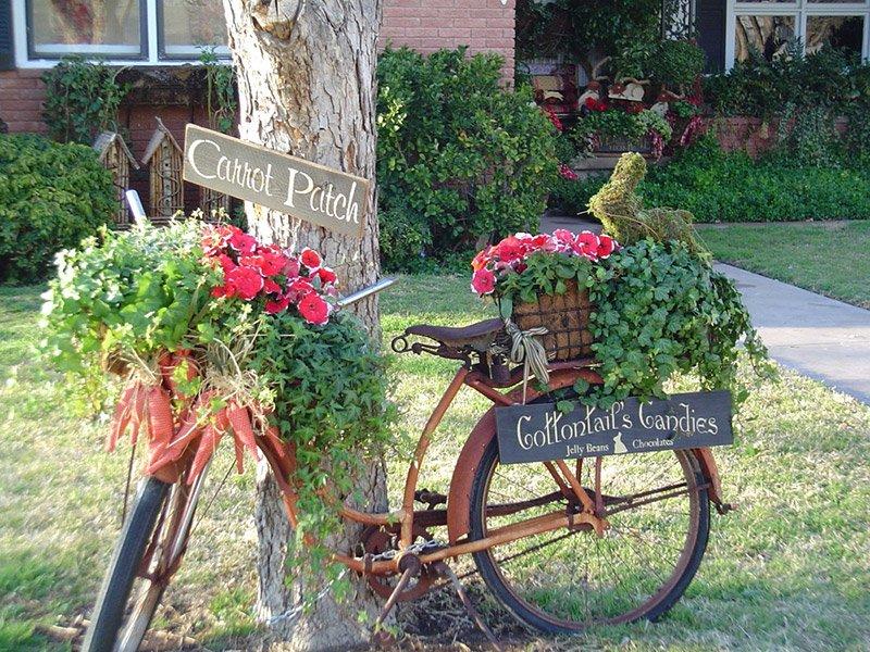 garden-idea-photos