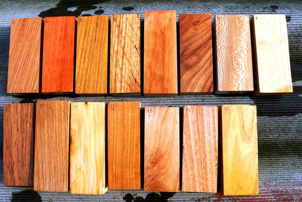 Породы дерева для постройки дома
