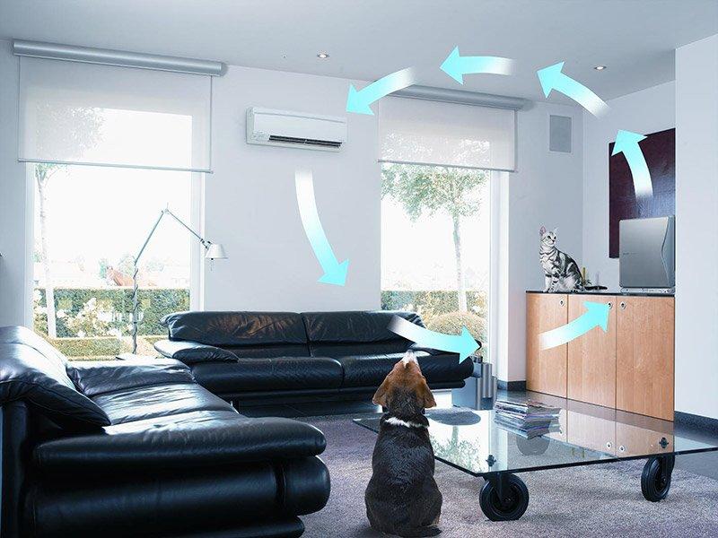 Воздухоочистители для дома. Разновидности