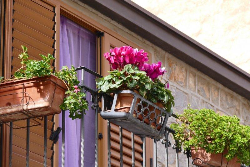 house-flower-window-home-porch-balcony-cottage-backyard-italy-facade-property-garden-flowers-interior-design-courtyard-estate-floristry-flower-box-balcony-plant-flower-boxes-terrace-flowers-outdoor-structu