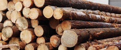 Дерево как строительный материал