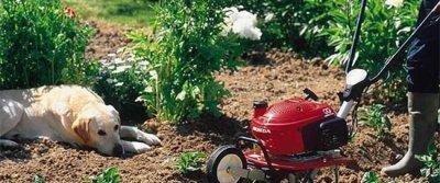 Садовая техника – надежный помощник в обустройстве территории