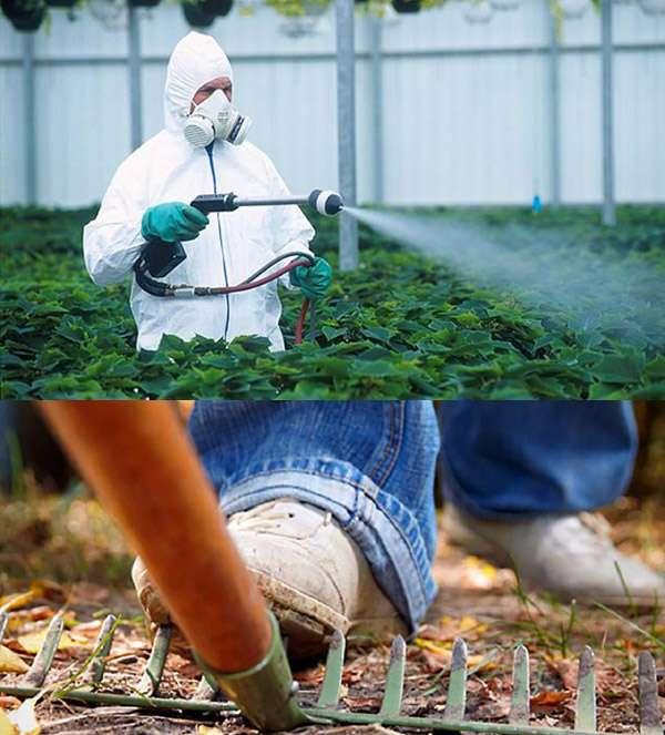 Храните садовый инвентарь и химикаты подальше от детей