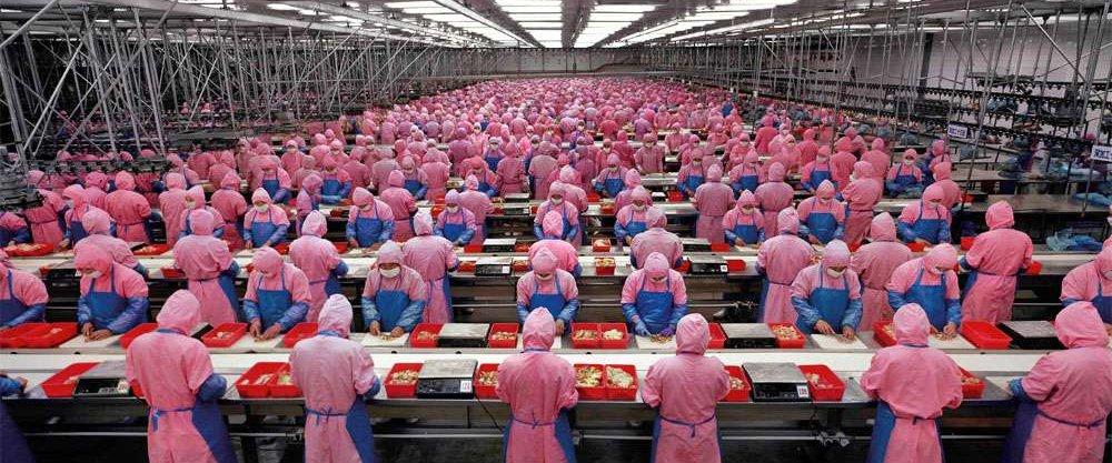 Требования к производственным помещениям