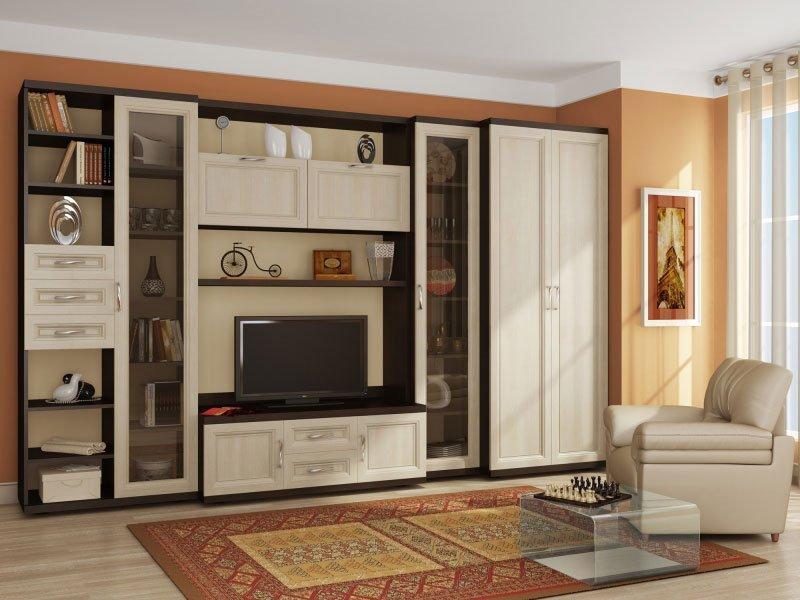 Корпусная мебель для гостиной фото 2