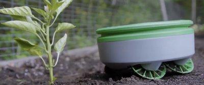 5 незаменимых помощников для огорода с AliExpress