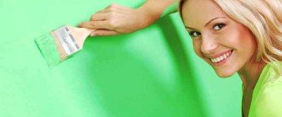 Моющаяся краска для стен: виды и использование