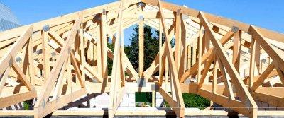 Типы, конструкции и основные элементы крыш