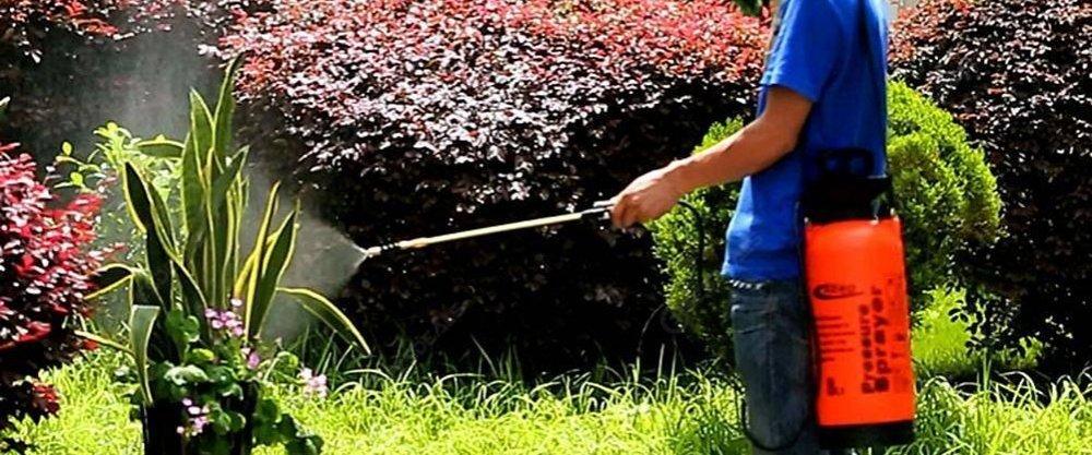 5 проверенных товаров для сада и огорода с AliExpress