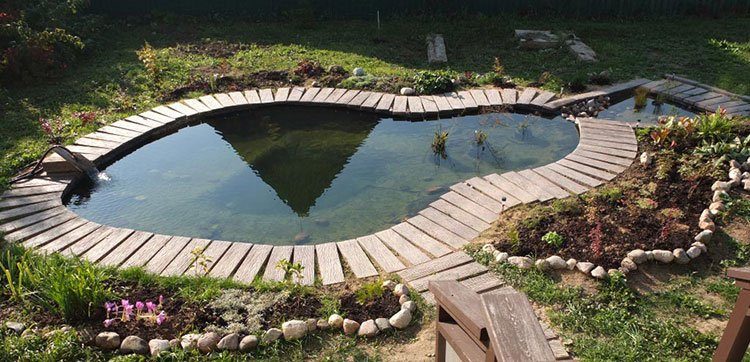 Декоративный пруд на даче для плавания