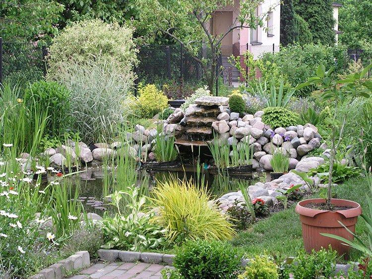 Декоративный пруд на даче фото 3