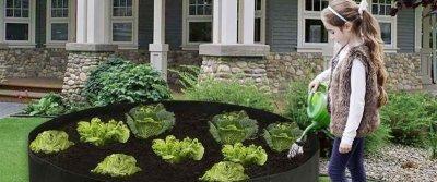 5 полезных мелочей для работы с рассадой с AliExpress