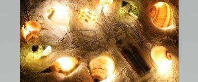 5 оригинальных вещиц из природных материалов с AliExpress