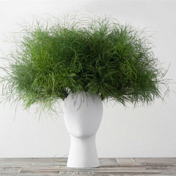 Модная ваза для цветов в скандинавском стиле SIBAOLU (2 цвета)