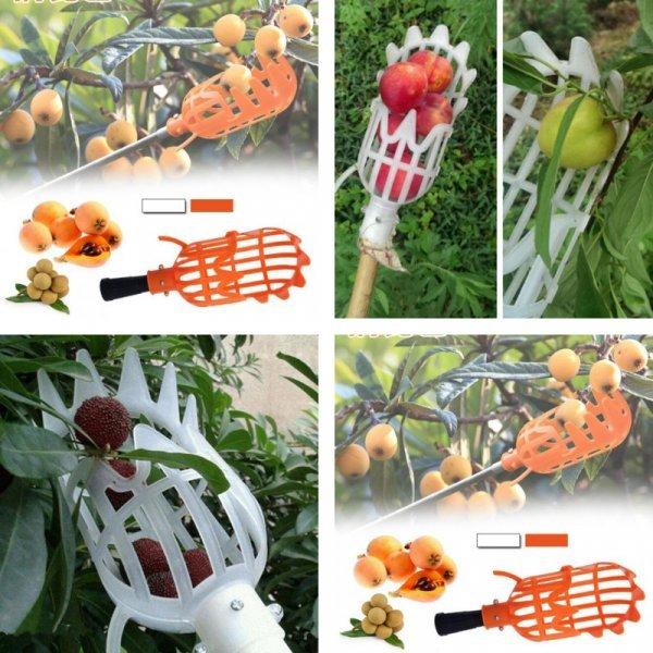 Собиратель фруктов