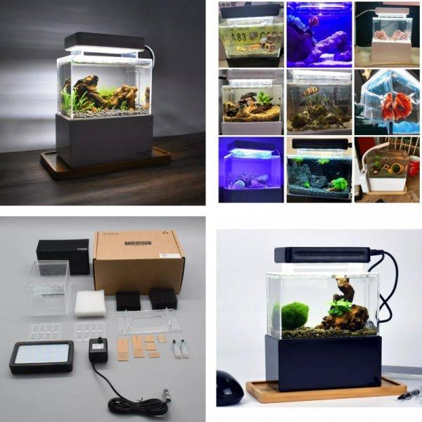 Настольный мини-аквариум
