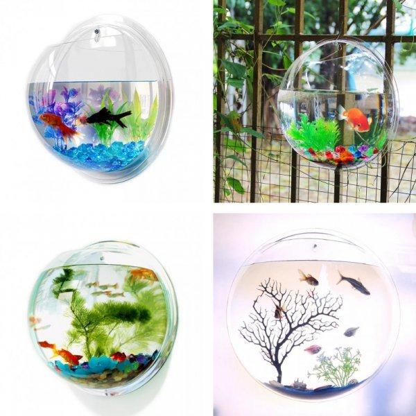 Настенный аквариум