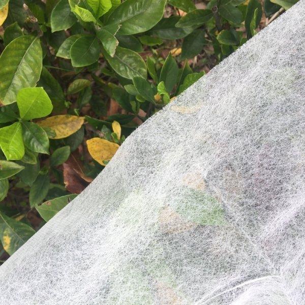 Укрывной материал от BATAWA (2*5 м)